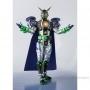 S.H. Figuarts Kamen Rider Wozgingafinaly Ltd