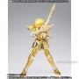 Saint Cloth Myth EX Aquarius Hyoga Ltd Pre-Order